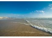 Курортный отель «Дельфин» Пляж
