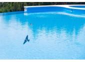 Пансионат «Золотая линия», бассейн