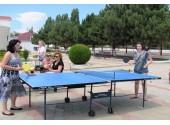 Пансионат «Золотая линия», настольный теннис