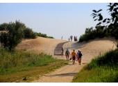 Пансионат «Золотая линия», пляж